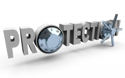 Maximize and Protect Business Value